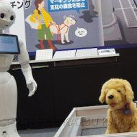 犬型ロボットは喋ることができないため、ひと目を引いた上でPepper(ペッパー)などの他のロボットに説明をさせるといった連携プレイが大事です。